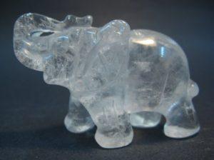 elefante transparente