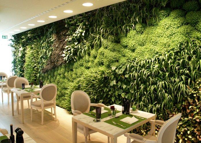 pared con plantas verdes
